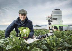 Robotlar tarım