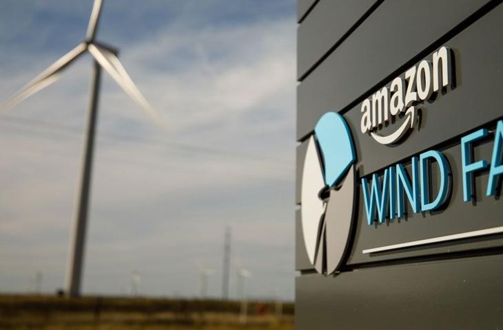 Amazon karbon salınımı