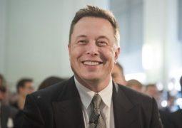 Elon Musk 1 milyon ağaç satın aldı