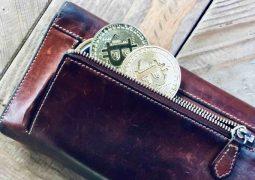 Seyahat şirketi Bitcoin